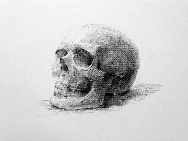skeleton_kai