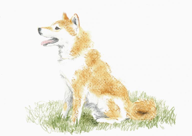 12月WS_犬を描くHP