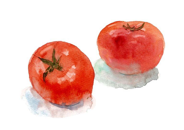 tomato297
